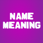 My Name Meaning 3.0.2 APK