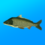 True Fishing. Fishing simulator 1.14.1.632 APK