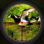 Duck Hunting 2019 – Real Wild Adventure Shooting 1.0 APK