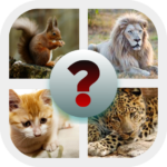 Show us your intelligence 2020 7.1.3z APK