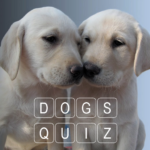 How Many Of These Dog Breeds Do You Know ? 0.16 APK