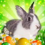 Hidden Object: Easter Egg Hunt 1.1.85b APK