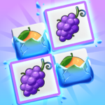 Onnect – Pair Matching Puzzle 5.14.0 APK
